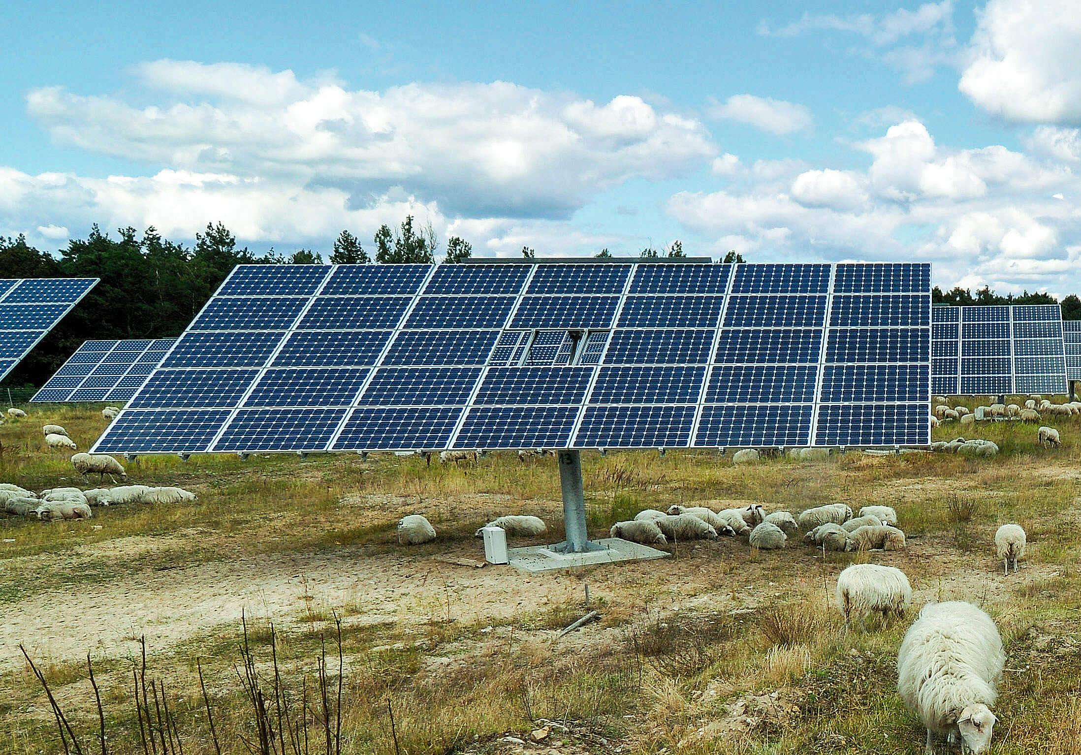 Photovoltaic - Neue Energien Forum Feldheim